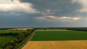 Sikt för sommargräsfält för storm lager videofilmer