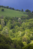 sikt för stara för bulgaria naturplanina Arkivfoto