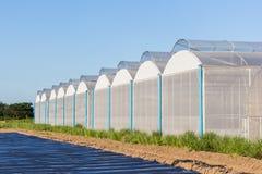 Sikt för växthus med blå himmel Arkivbild