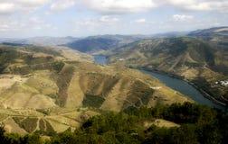 Sikt för wineyards för Douro dalflod flyg- Royaltyfri Foto