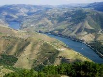 Sikt för wineyards för Douro dalflod flyg- ljus Arkivbilder