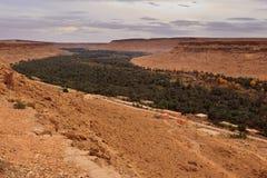 sikt för dal för saraha för ökenoas panorama- Fotografering för Bildbyråer