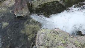 Sikt f?r str?m f?r berg fl?dande pittoresk Altai berg, Ryssland arkivfilmer