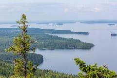 Sikt från överkant till den härliga sjön, Koli National Park Arkivfoto