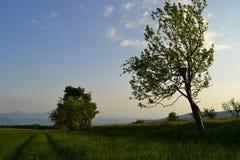Sikt från överkanten av kullen Arkivbilder