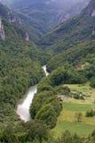 Sikt från ‡en för eviÄ för ` för Ä-urÄ en Tara Bridge i nationalparken Durmitor i Montenegro Royaltyfri Bild