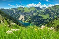 Sikt från alpin äng till sjön och berg Vårsommar Royaltyfria Bilder
