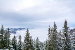 Sikt från bergöverkanten Wallberg som täckas med snö på en molnig dag, bayerska fjällängar, Bayern, Tyskland royaltyfri fotografi