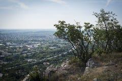 Sikt från berget med några träd överst till den industriella staden under Arkivbild