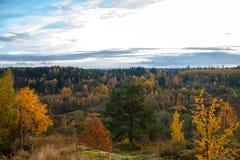 Sikt från berget till staden Tid av året är hösten royaltyfria bilder
