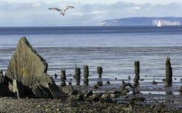 Sikt från Blaine Marine Park Fotografering för Bildbyråer