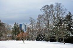 Sikt från botaniska trädgårdarna i vinter till mitten av Oslo Arkivfoto