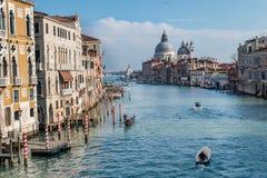 Sikt från broden akademiska världen, kanal av Venedig, Italien arkivfoto