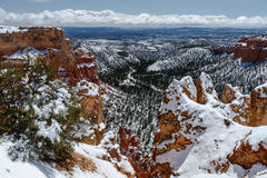 Sikt från Bryce Canyon, Utah med snö, till dalen under Arkivbild