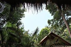 Sikt från bungalowen Fotografering för Bildbyråer
