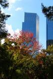Sikt från Central Park, NY Royaltyfri Bild