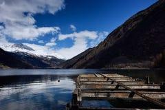 Sikt från de schweiziska fjällängarna LXI Royaltyfri Fotografi