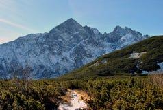 Sikt från den Biele plesaen, höga Tatras, Slovakien Arkivfoto