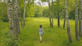 Sikt från den ovannämnda unga kvinnan i skog som ler flickan i björkdunge fotografering för bildbyråer