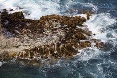 Sikt från den stora havvägen Arkivbild