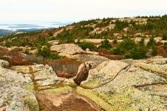 Sikt från det Caddilac berget i Acadianationalpark royaltyfri bild