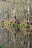 Sikt från dragvägen Arkivfoto