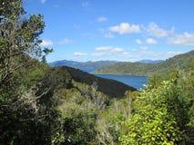 Sikt från drottningen Charlotte Track, Nya Zeeland Royaltyfria Bilder