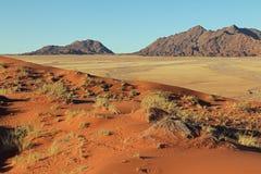 Sikt från en dyn i Sossusvlei i Namibia Royaltyfria Bilder