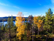 Sikt från en kulle till en sjö över skog i höstfärger i Lapl Arkivfoto