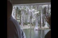 Sikt från flodfartyget på silverfloden i Silver Springs, Florida stock video