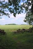 Sikt från Forst Poggendorf arkivbilder