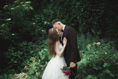 Sikt från gröna sidor på ett kyssande brölloppar fotografering för bildbyråer