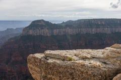 Sikt från Grand Canyon Arkivbild