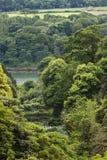 Sikt från husjordning på Trebah trädgårdar, Cornwall Royaltyfria Bilder