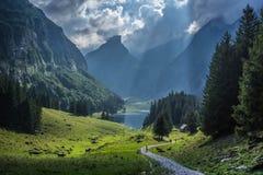Sikt från i berget i Schweiz Royaltyfri Foto