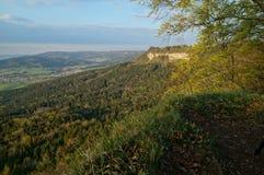 Sikt från klippan på dalskog Royaltyfri Fotografi