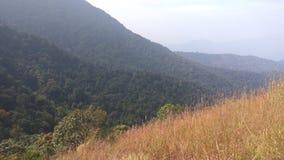 Sikt från Kodachadri den Trekking slingan Royaltyfri Foto