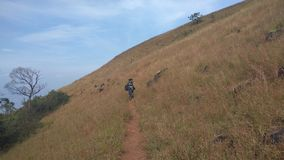 Sikt från Kodachadri den Trekking slingan Royaltyfri Fotografi