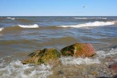 Sikt från kusten Arkivfoton