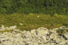Sikt från lutningen av berget ner till och med stenstenrans Arkivfoto