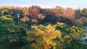 Sikt från min balkong Royaltyfria Bilder