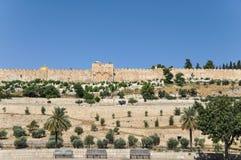 Sikt från Mountet of Olives av Golden Gate i Jerusalem arkivfoton