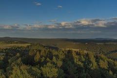 Sikt från observationstornet Krasno i sommarafton i Slavkovsky lesberg royaltyfri foto