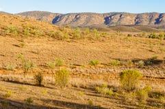 Sikt från Rawnsley utkik - Flindersområden Royaltyfri Fotografi
