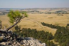 Sikt från Ridgen på fortet Robinson State Park, Nebraska royaltyfria foton