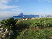 Sikt från Santos Dumont Airport Arkivbild