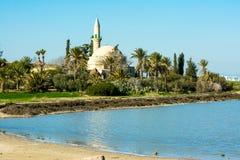Sikt från sjön Arkivbild