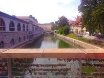 Sikt från slaktarebron till floden på Ljubljana Royaltyfri Foto