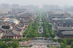 Sikt från stor lös gåspagod av Xian Royaltyfria Bilder