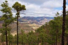 Sikt från taurotoppmöte till ön av Gran Canaria Arkivbild